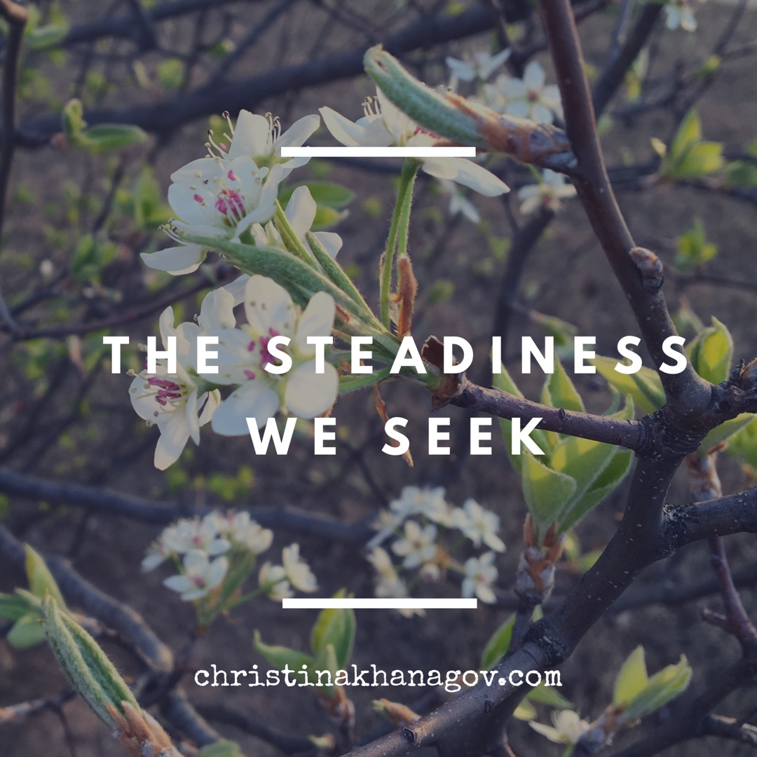 steadiness we seek